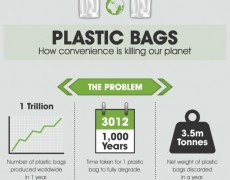 Did you know Southampton town was the first in New York to ban plastic bags?